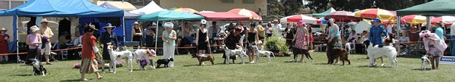Visit Sunbury All Breeds Dog Show every November